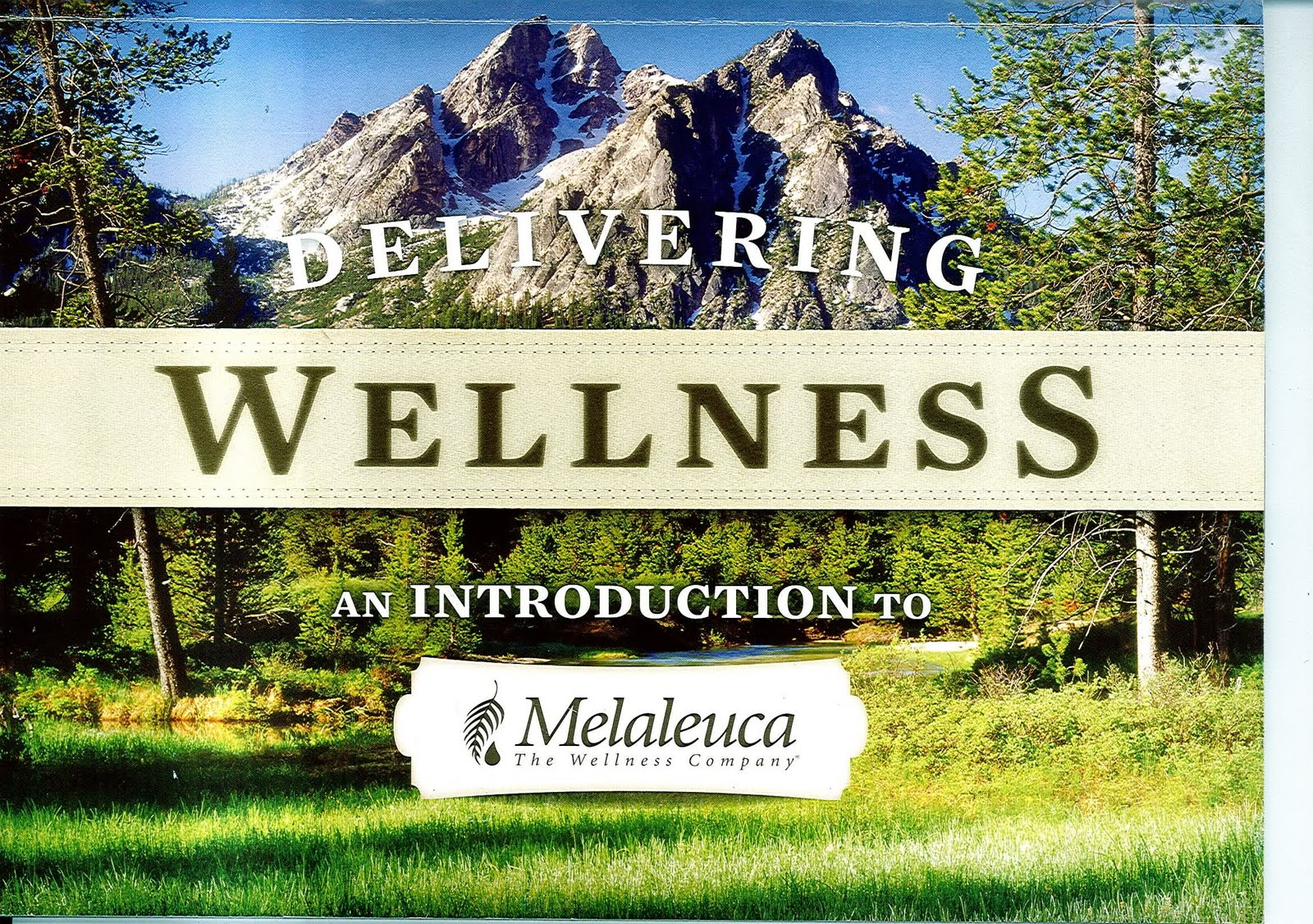 Melaleuca The Very Definition Of Greenwashing Eco Friendly Baby